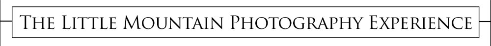 photography-experience-banner