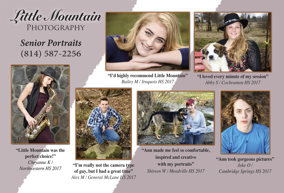 SFW-for-Blog-4x6-Post-Card-Senior-Mailer-2016, Cambridge Springs High School, Class of 2017, Northwestern High School, General McLane High School, Cochranton High School, Iroquois high School, Meadville area high School, Penncrest School District, Meadville School Disctrict, Conneaut Area School District